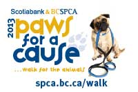 Paws For The Cause Image