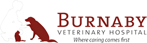Burnaby Veterinary Hospital